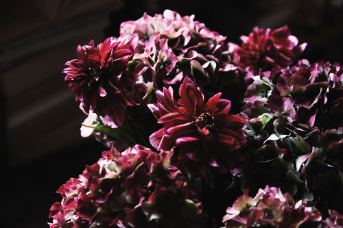 PJB_IMG_9629_flowersontable.jpg
