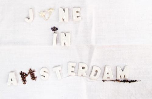 PJB_juneinamsterdam3.jpg