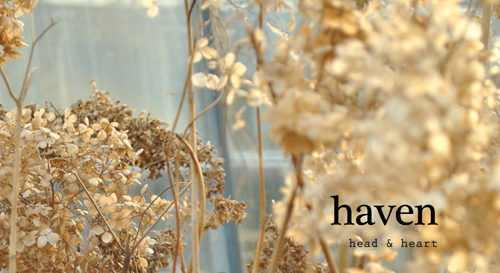 havenheader21.jpg