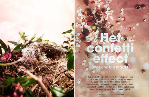 PiaJaneBijkerk_AestheticsOfJoy_birdsnest_confetti.jpg