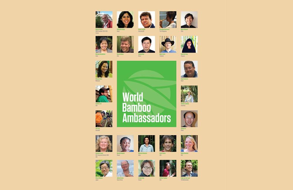 world bamboo uruguay