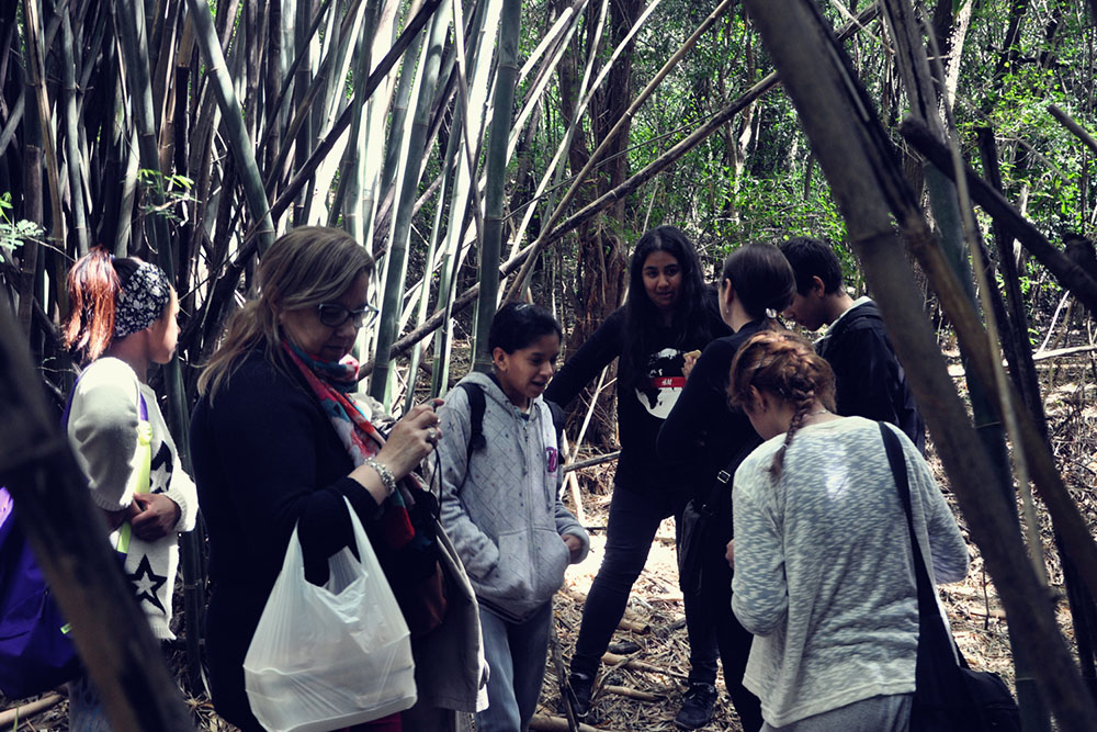 nuestro bambu Escuela de Arte y Artesania Pedro Figari