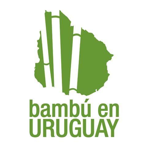 bambu en uruguay.jpg