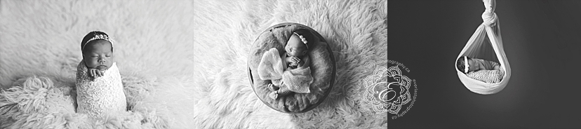 posed newborn photography edmonton