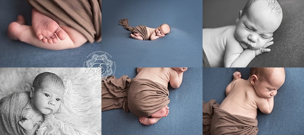 edmonton posed newborn photographers
