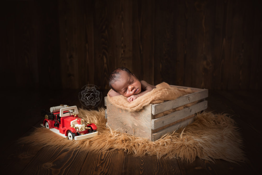 edmonton-professional-newborn-photographer