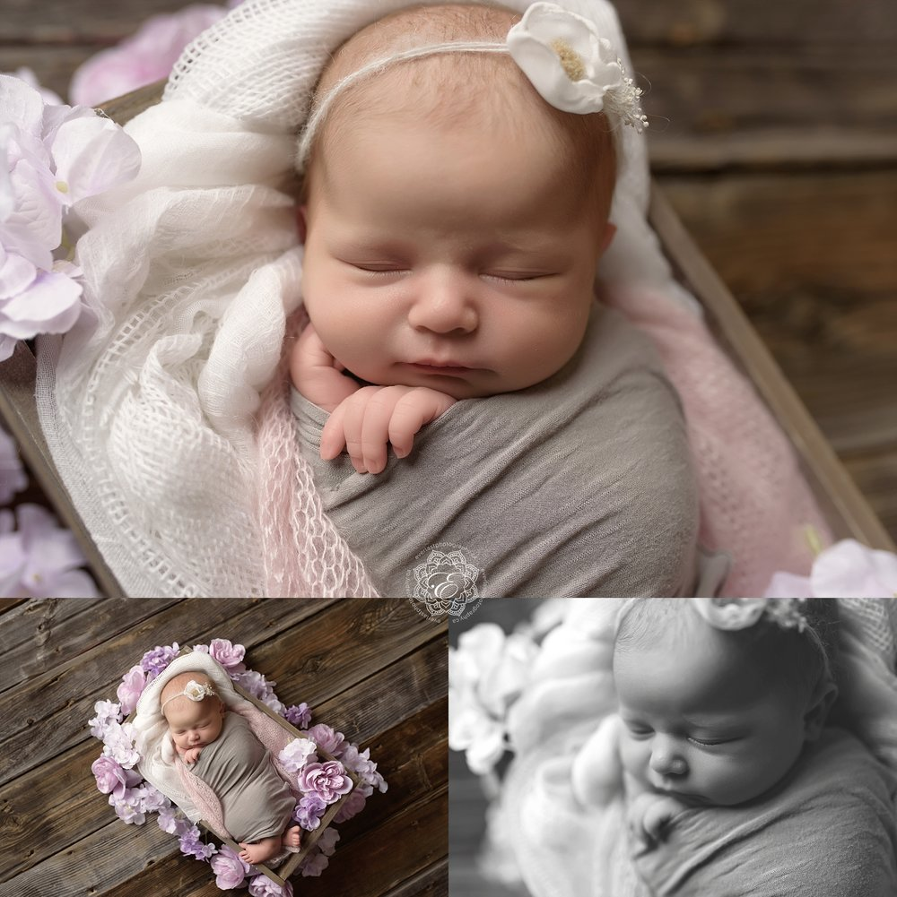 edmonton-newborn-photographer.jpg
