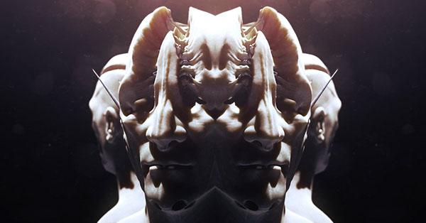SplitHeads.jpg