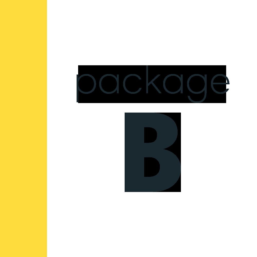 PackageB.png