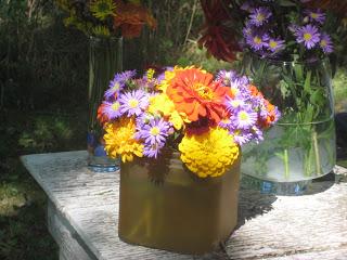 Flower_farm11