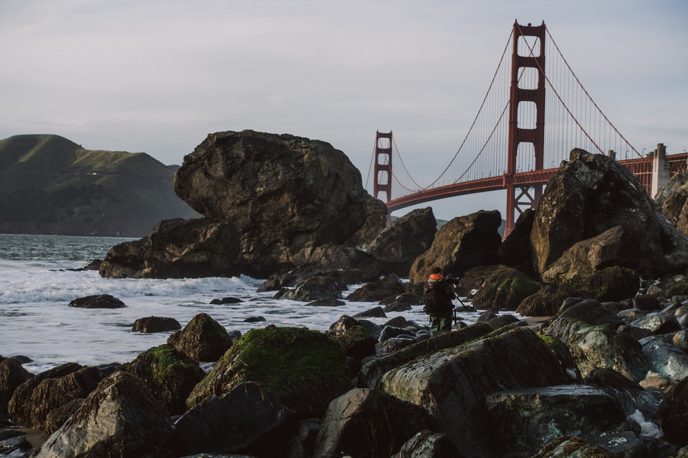 San Francisco-DSC00730DNG.jpg