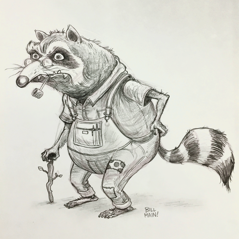 Character design for a park-dwelling, hillbilly raccoon.