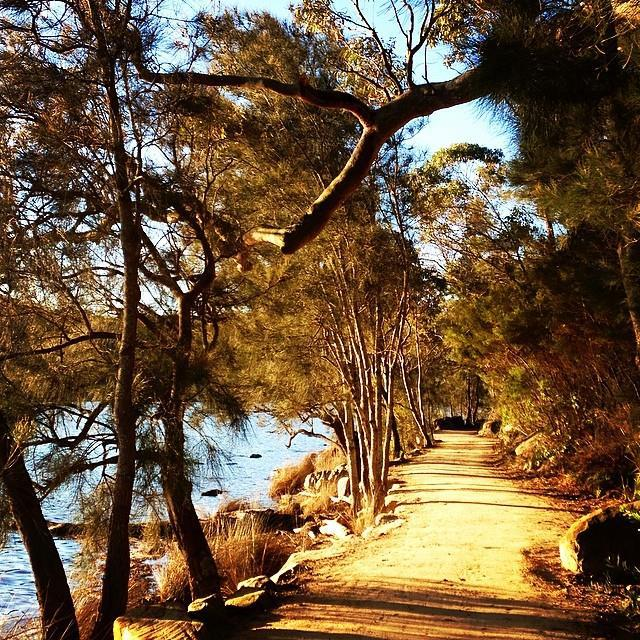Graham Jones Track circulates the Narrabeen Lagoon. A great walk or cycle.