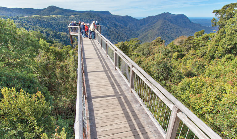 The Skywalk looking out over the Dorrigo National Park is only 40-minutes drive along picturesque Waterfall Way