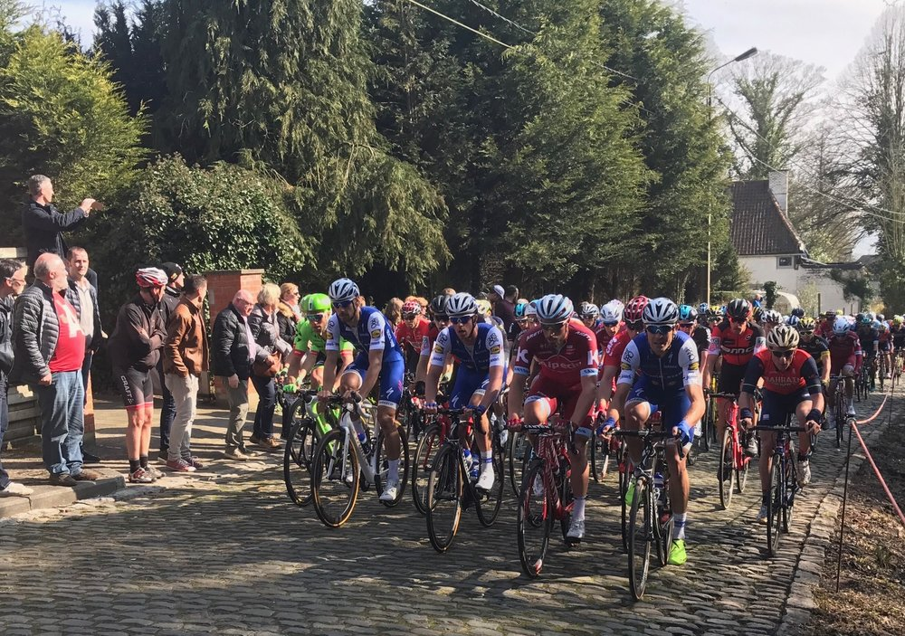 E3 Harelbeke 17 - Tom Boonen leads the peloton on the Old Kruisberg climb at Ronse