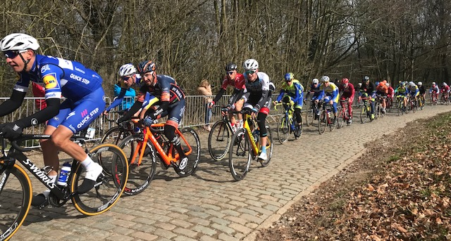 BiciSport in Flanders @ 21 Mar - the De Panne Classic peloton climbing the cobbled Kemmelberg