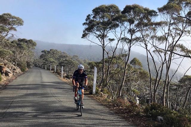 Mark Preston (BiciSport Master) climbing Mt Wellington (12k @ 7%) outside Hobart on 16 January. Mark was touring Tasmania with the support of Velo Tours Australia