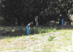 Property Clean Up 2.jpg