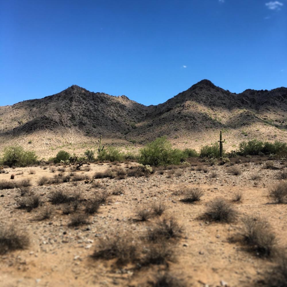 TRAVEL_AZ Desert.jpg