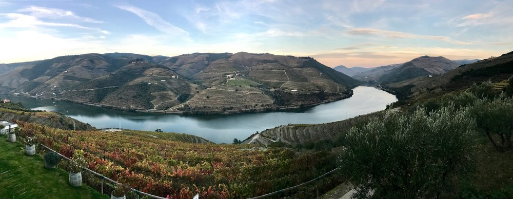 Setting sun casts colors and shadows high on the hillside that rises above the Douro River. Note the fall colors that decorate the leaves of the vines running down to the river below.