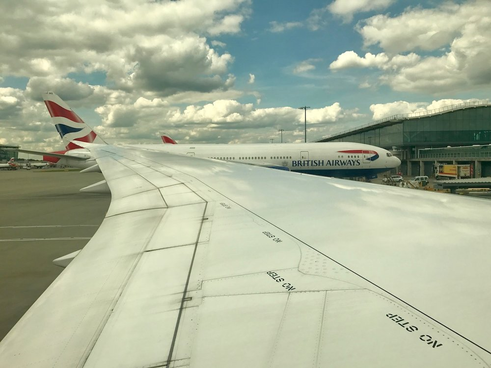 TRAVEL_Dreamliner Wing.jpg