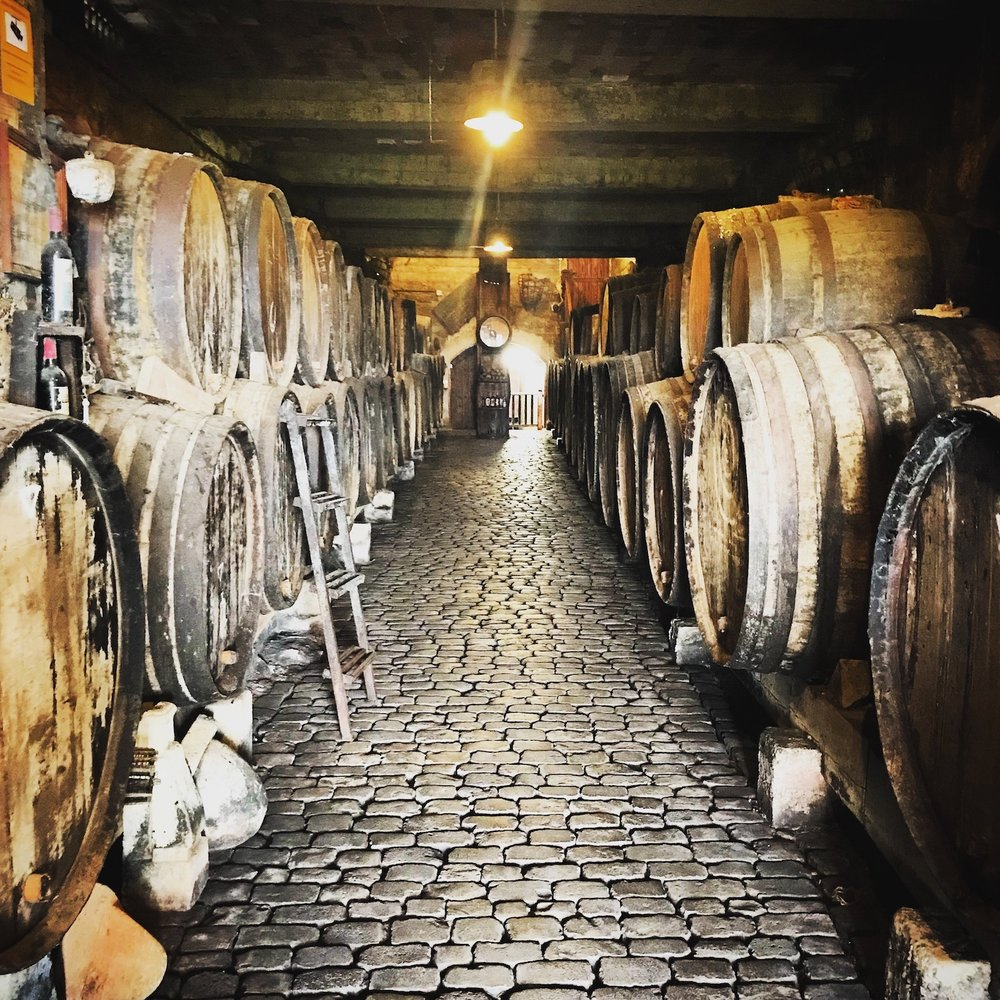 Exquisite barrel cellar of Bodegas Monje
