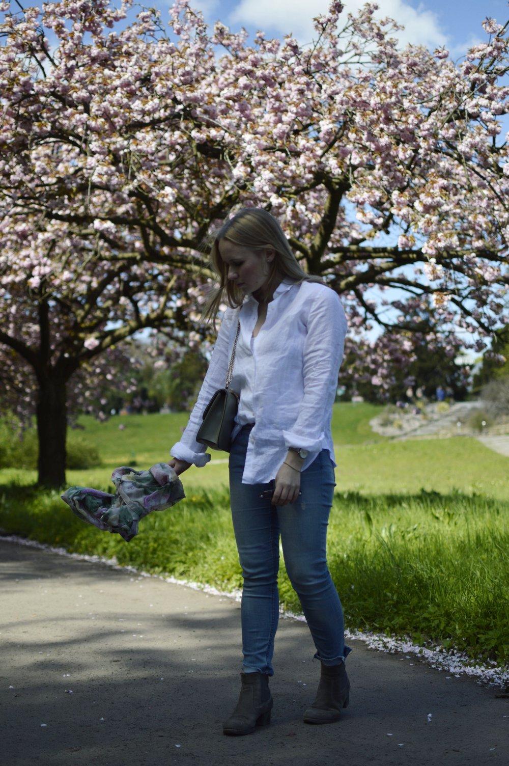 Blog-Berlin-Botanischer-Garten-Kirschblüten