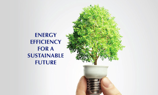 Energy efficiency for a sustainable future. Tree coming out of a lightbulb.