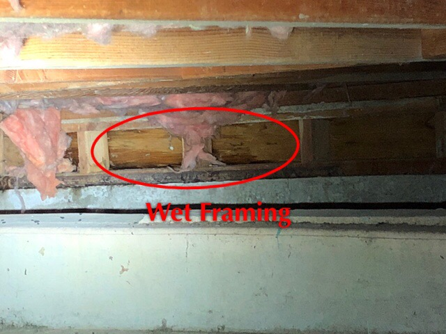 There is a few things wrong here but the wet framing at the far side of the crawlspace is wet!