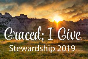 stewardship-icon.jpg
