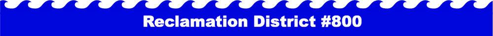 RD800 Logo.jpg