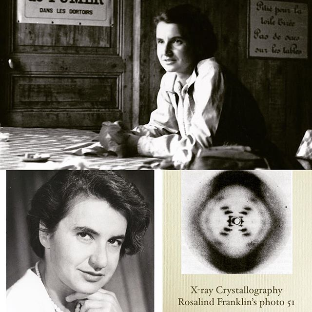 """1st Edition - Profiling and celebrating the life and contributions of 20 female scientists and pioneers of the scientific community. Number 12 - Rosalind Franklin.  Born in 1920 in London, Rosalind knew she wanted to be a scientist at 15 years old.  Her father disapproved of her going to university, but Rosalind had many strong women in her family and they all helped her stand up to her father and pursue her dream.  Rosalind went on to earn a PhD in physical chemistry from Cambridge University. DNA was the hot topic of the day.  Scientists knew DNA were the building blocks for the body but knew little about its structure.  As a scientist at King's College Rosalind researched the structure and spent hours upon hours perfecting her technique using X-ray on the delicate DNA fibers.  After some time Rosalind was able to capture a photo that proved DNA was a double helix. While also researching the structure of DNA, James Watson and Francis Crick stole Rosalind's research and images to publish their own work without giving her any credit.  Watson and Crick won the Nobel prize for their stolen work while Rosalind was overlooked.  James Watson later admitted to looking at Rosalind's data and the world began to figure out that Rosalind Franklin was behind the discovery.  In 1958, at the age of 37, Rosalind Franklin died of cancer, most likely because of the amount of radiation she was exposed to in her research to discover the structure of DNA. Rosalind Franklin gave her life in pursuit of scientific discovery and was dismissed because of the attitudes toward women by men.  Because of her dedication, bravery, genius, and persistence Rosalind Franklin is an inspiration to women everywhere and for that we honor and salute you. . . [Information gathered from the book """"Women in Science"""" - by Rachel Ignotofsky] #RosalindFranklin #womeninscience #morewomeninscience #girlsinscience #moregirlsinscience #science #scientists #femalescientist #mrwolfslab #whatsyourlab #chemistry #DNA """