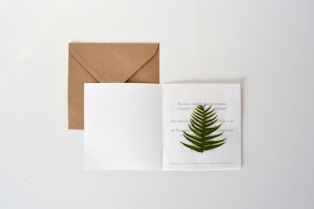 Colección verde. Modelo 2