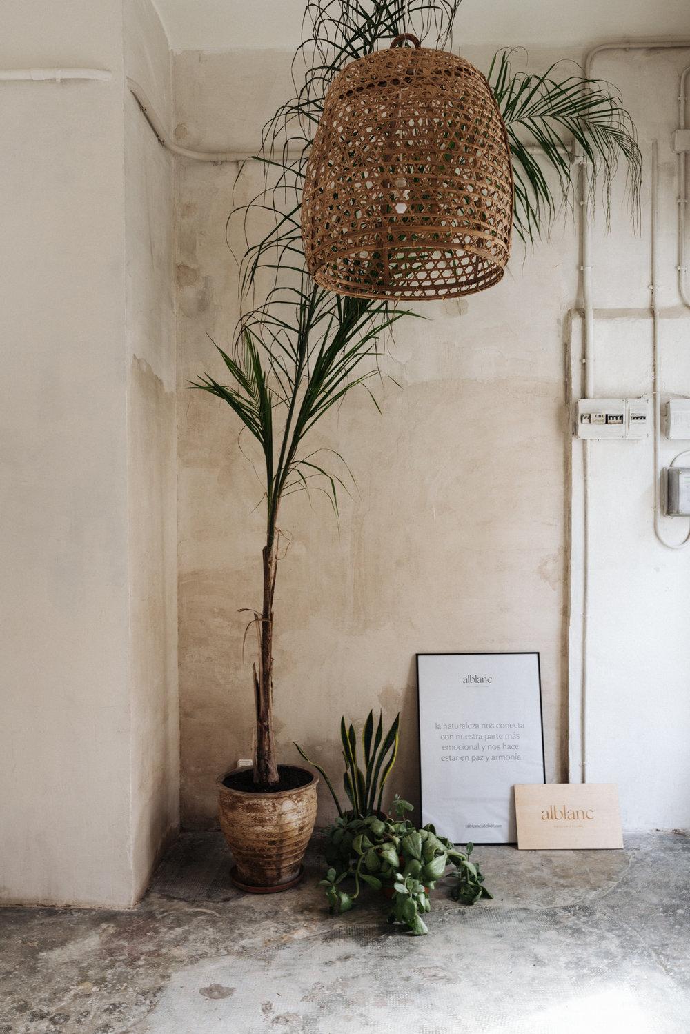 Alblanc taller floral.jpg