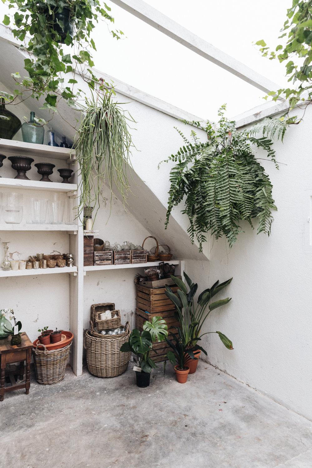 Espacio de planta cuadrada y techo abierto del que cuelgan numerosas plantas. Contamos con luz natural todo el día. Siempre que haya luz, nosotros disfrutamos de ella. - 45 metros cuadrados.Una gran mesa central de trabajo en madera.