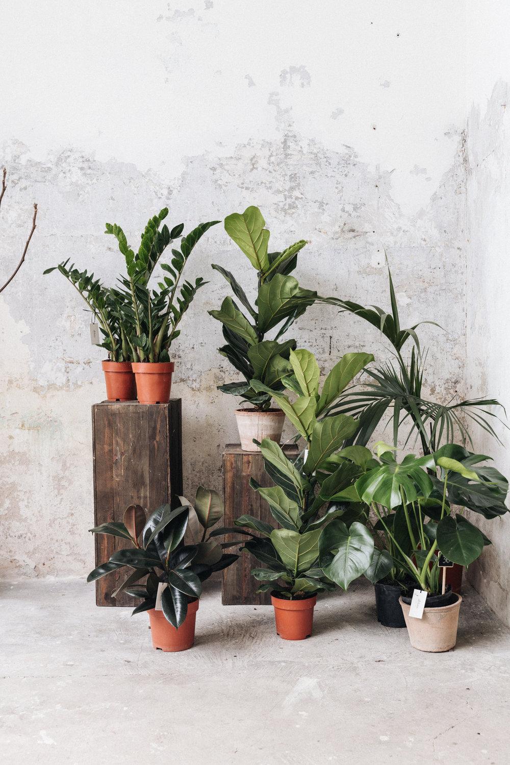 alquiler espacio barcelona plantas 3.jpg
