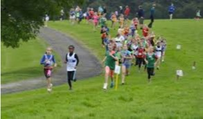 Cross Country image.jpg