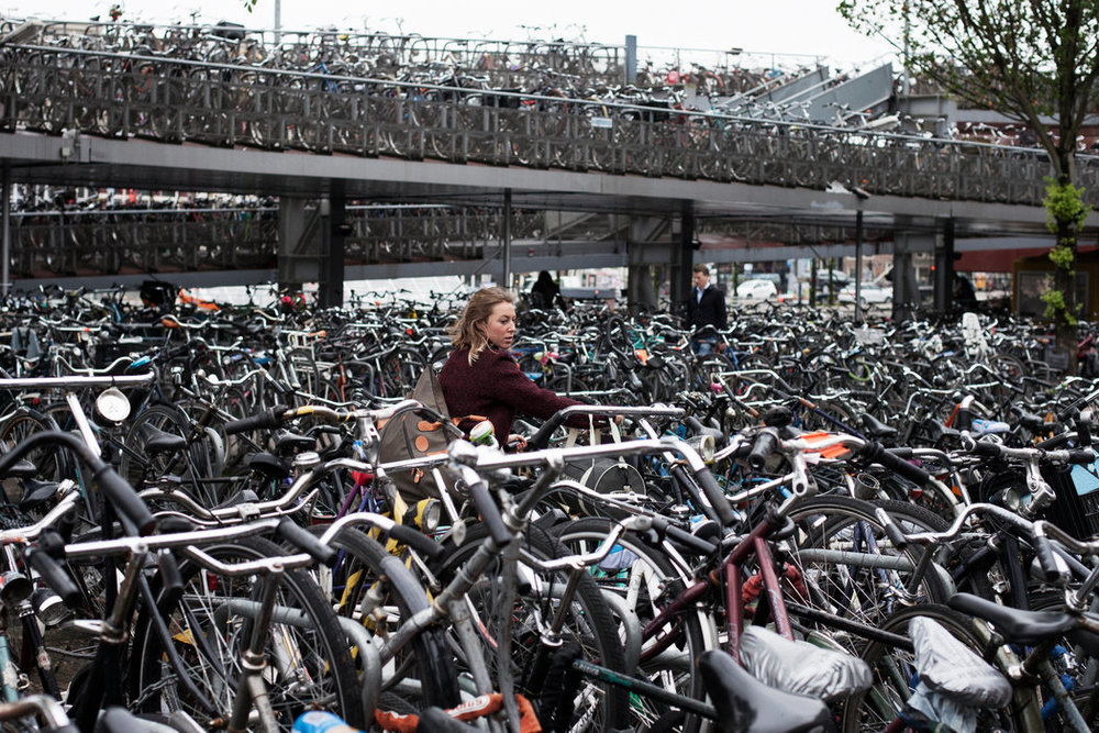 Bikes of Amsterdam: stock photo taken from Google