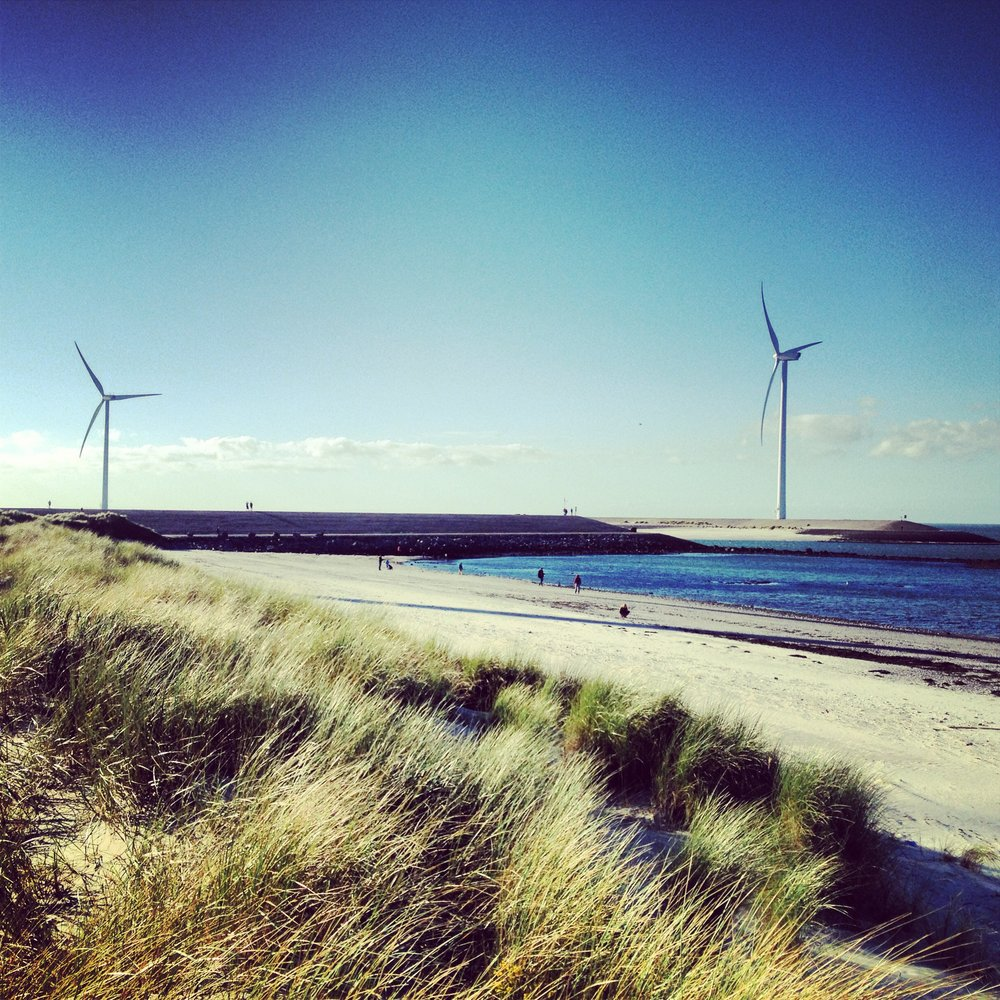 Dune beaches of Oosterschelderkering: photo by Arlen Stawasz