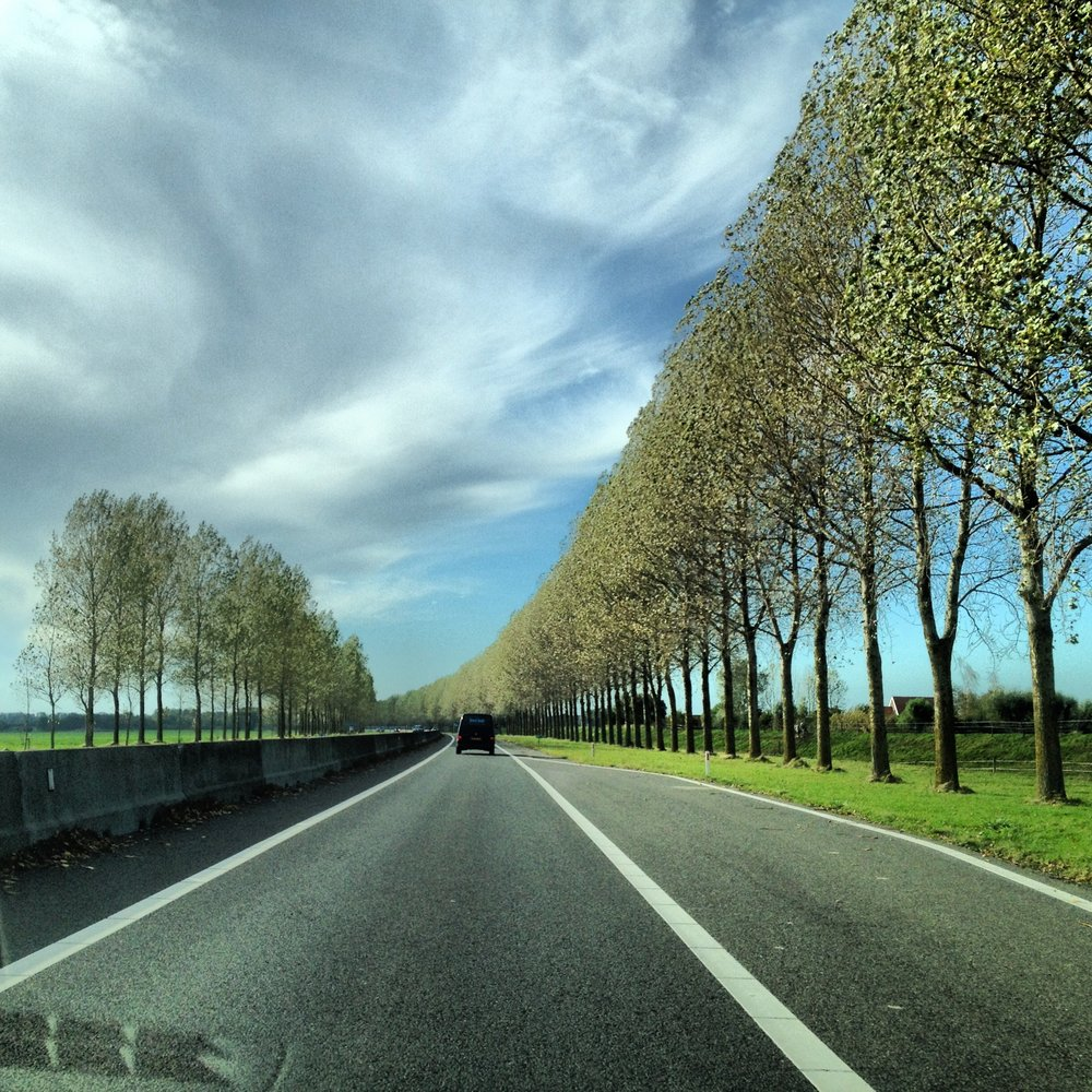 Dutch highways, including rhythmic tree plantings stretching for miles and miles: photo by Diego Arias