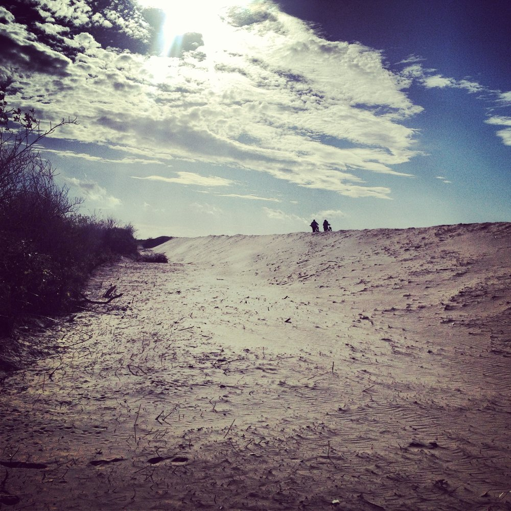 Recreational sand dunes along Oosterscheldekering: photo by Arlen Stawasz