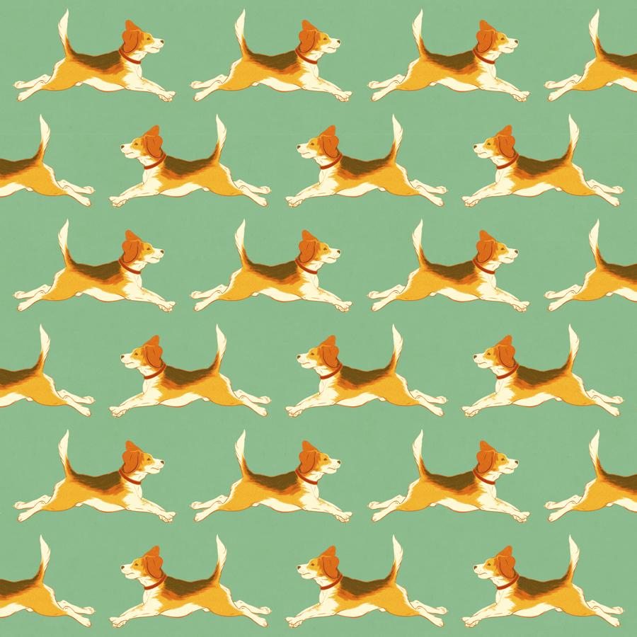 Beagle Pattern