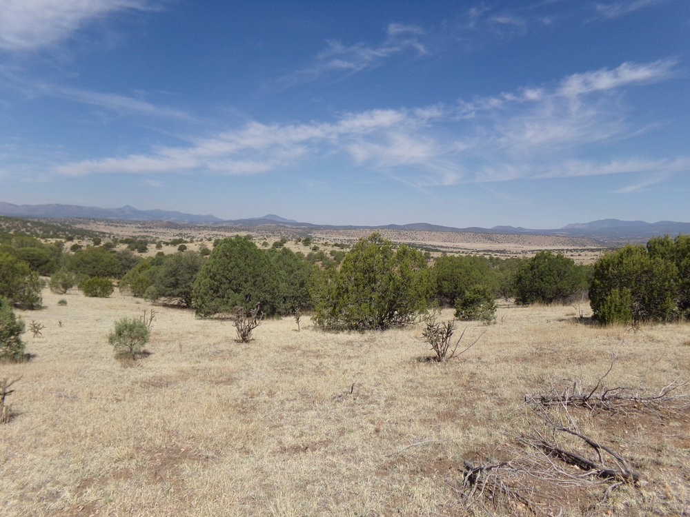 Wide Open Spaces and Great Views!