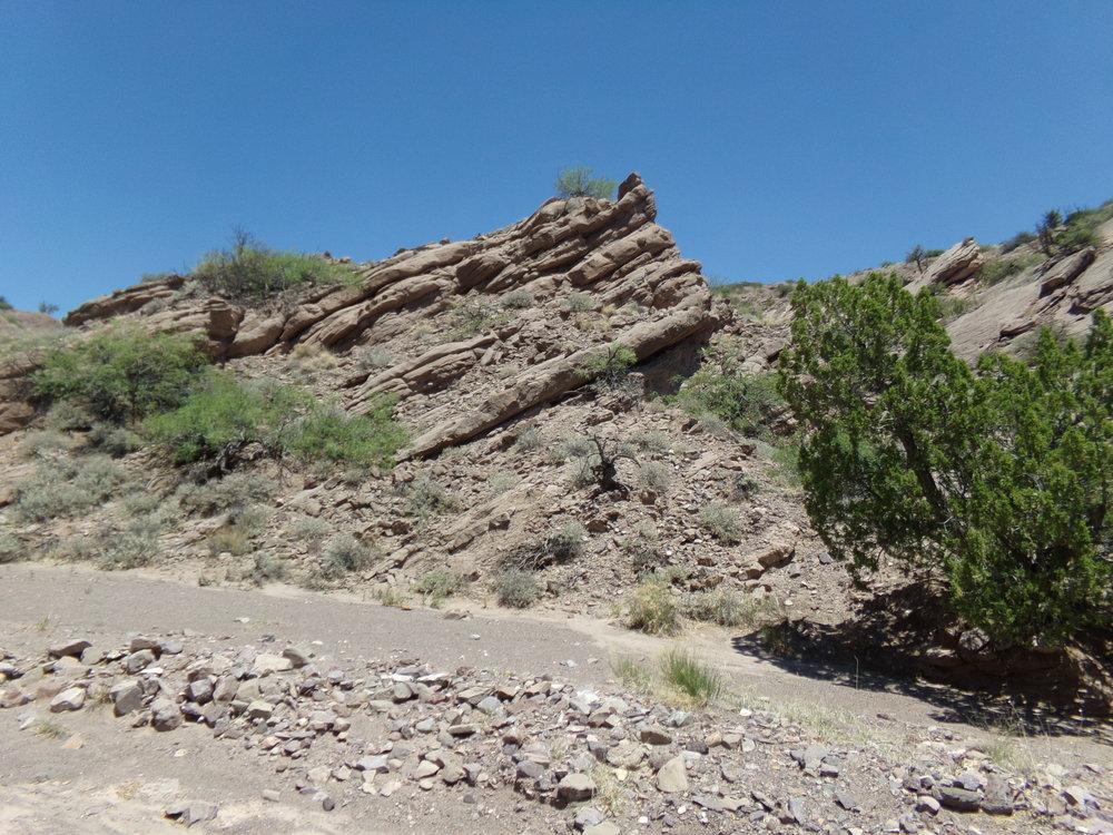 San Lorenzo Canyon Formations