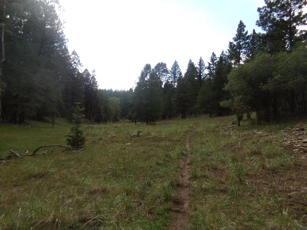 Bailey Canyon Trail