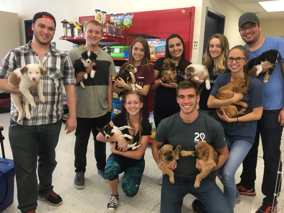 Members pair with the east coast humane society to assist in pet adoptions every weekend!