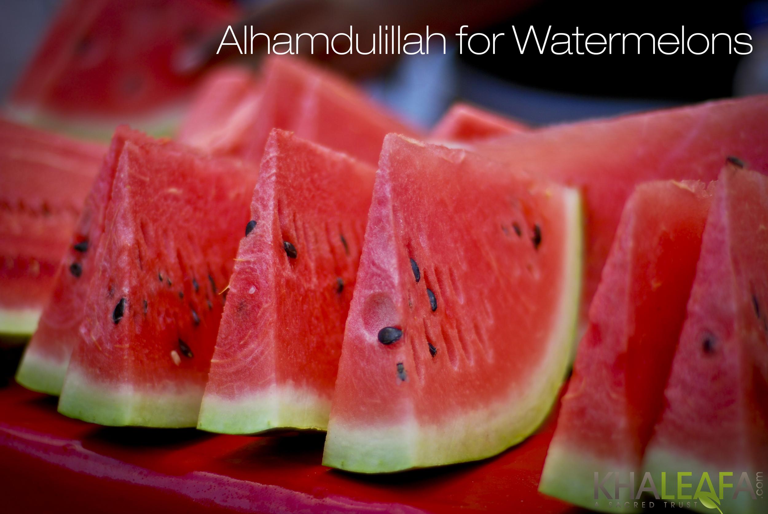 Watermelons Final