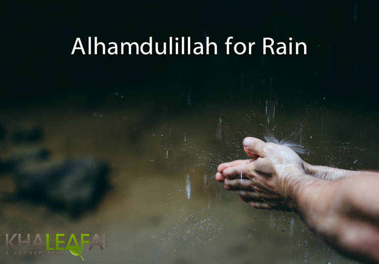 Alhamdulillah for rain khaleafa and it is he who sends the winds as good tidings before his mercy and we send down from the sky pure water quran 2548 altavistaventures Images