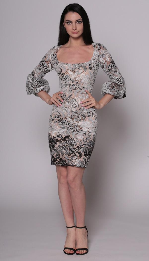 Lace Balloon Sleeve Dress