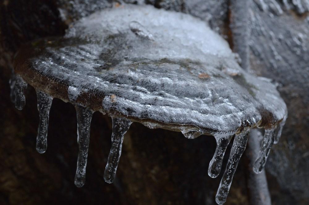 ice 018.JPG